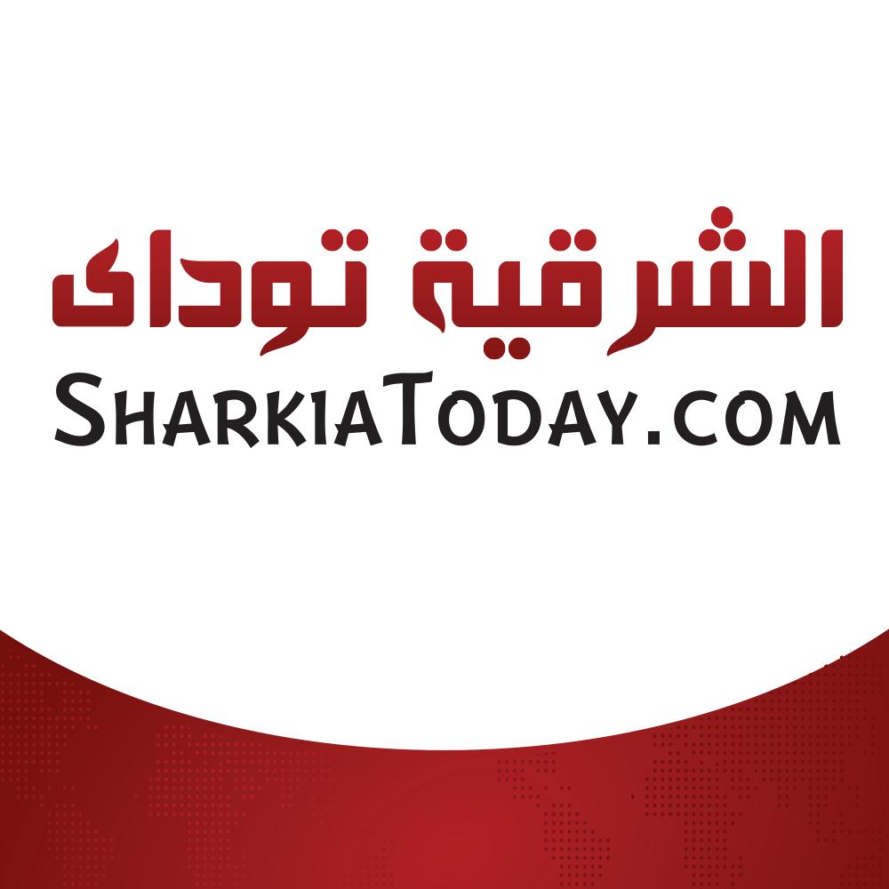 sharkiatoday website